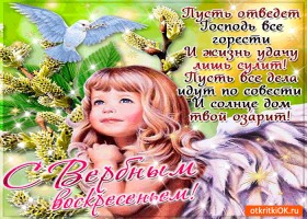 Открытка с вербным воскресеньем - пожелания для вас