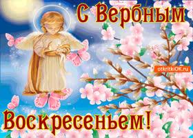 Открытка с вербным воскресеньем - счастья вашим близким