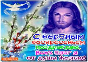 Картинка с вербным воскресеньем - всех благ от души желаю