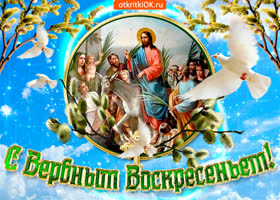 Картинка с вербным воскресением тебя