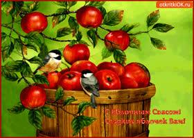 Открытка с яблочным спасом! сладких яблочек вам!
