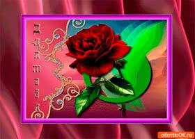 Картинка самый красивый цветок тебе