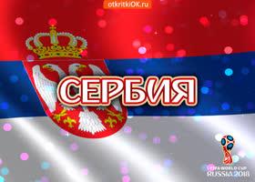 Картинка сборная сербии