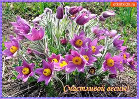 Картинка счастливой и цветущей весны