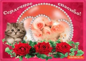Картинка сердечное спасибо открытка