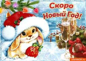 Картинка скоро-скоро новый год будет праздновать народ