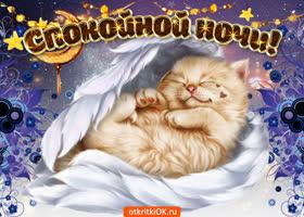 Картинка сладких снов тебе желаю и целую нежно