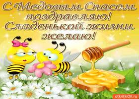 Картинка сладкой жизни желаю! с медовым спасом поздравляю
