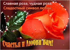 Картинка славная роза для вас