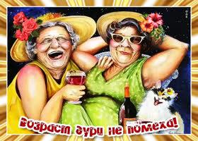 Картинка смешная открытка подруге