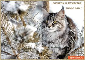Открытка снежной и пушистой вам зимы