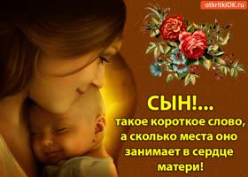 Картинка сын! - такое короткое слово, а сколько места оно занимает в сердце матери!