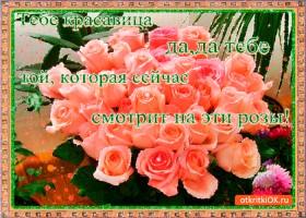 Открытка тебе красавица эти розы