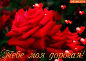 Открытка тебе, моя дорогая волшебные розы