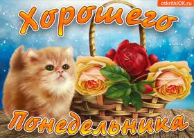 Картинка тебе открытка для хорошего понедельника