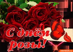 Картинка тебе поздравление с днем розы