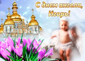 Открытка тебе желаю море счастья в день ангела, игорь