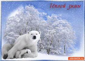 Картинка тёплой и незабываемой зимы