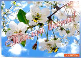 Картинка тёплой вам весны