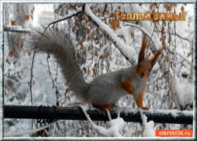 Картинка тёплой зимы родным