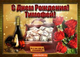 Открытка тимофей с праздником тебя