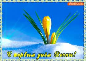 Открытка тёплая весна наступила