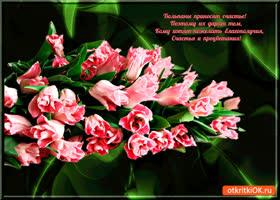 Открытка тюльпаны вам счастья принесет