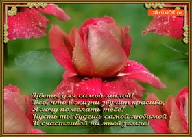 Картинка цветы для самой милой