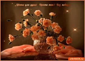 Картинка цветы для твоей нежной души