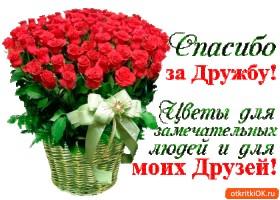 Картинка цветы для замечательных друзей