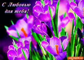 Картинка цветы с любовью для тебя