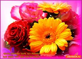 Открытка цветы тебе без повода