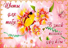 Картинка цветы в знак вашей дружбы