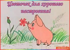 Картинка цветочек для хорошего настроения!