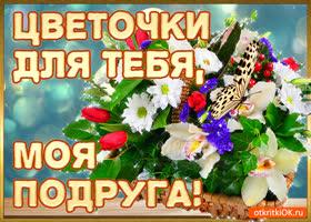 Картинка цветочки для тебя моя подруга