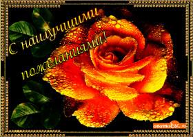 Картинка цветок с наилучшими пожеланиями