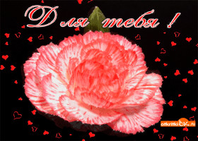 Картинка цветок с сердечками