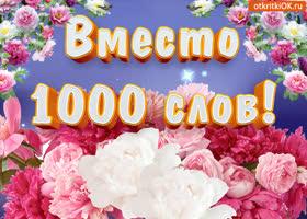 Картинка цветы вместо 1000 слов