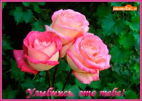 Картинка улыбнись это тебе букет роз