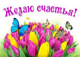 Открытка улыбнись! эта корзина цветов для тебя