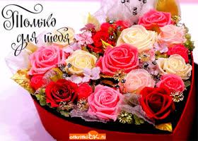 Картинка уникальные цветы