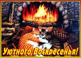 Картинка уютного воскресенья друзья мои