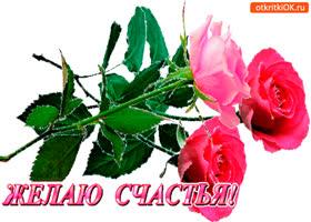 Открытка в день счастья розы тебе