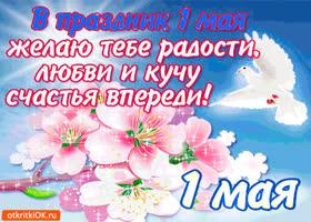 Картинка в праздник 1 мая желаю тебе счастья
