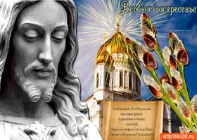 Картинка в вербное воскресенье - верба цветет