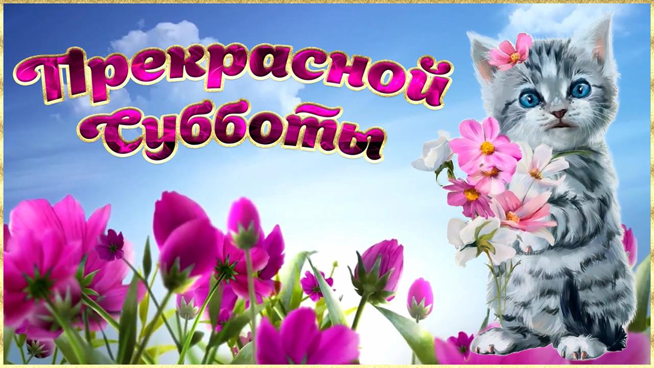 Картинка прекрасной субботы! с добрым субботним утром! очень красивая музыкальная открытка!