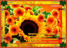 Картинка вам прекрасных хризантем букет