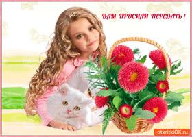 Открытка вам просили передать эту корзину цветов