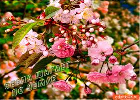 Картинка весна шагает по земле