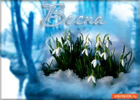 Открытка весна тихо расцветает